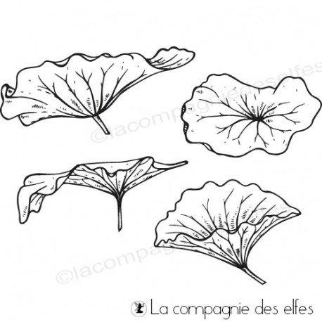 CARTE LIBRE 1/3 Tampons-feuilles-lotus