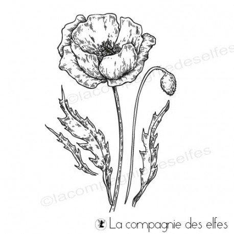 CARTE LIBRE 1/3 Tampon-encreur-coquelicot-en-fleur