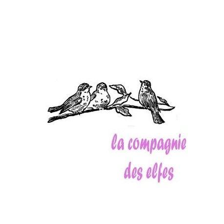 les minis albums d'octobre 2016 Des-oiseaux-sur-une-branche-tampon-nm