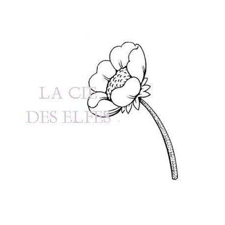 Les cartes de janvier 2017 Anemone-fleur-nm-tampon