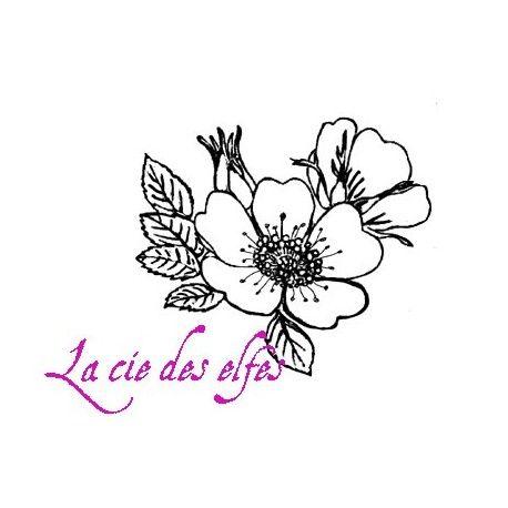 les minis albums d'octobre 2016 Bouquet-d-eglantine-tampon-nm