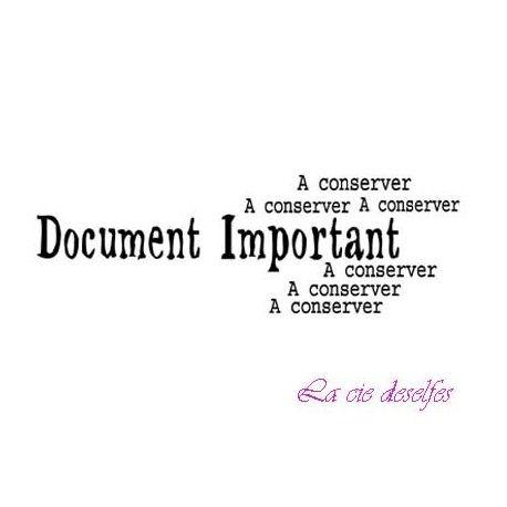 les minis albums d'octobre 2016 Document-important-a-conserver-tampon-nm