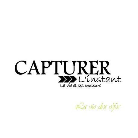 les minis albums d'octobre 2016 Tampon-capturer-l-instant-la-vie-et-ses-couleurs