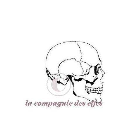 les pockets letters d'avril 2017 Tampon-crane-squelette-nm
