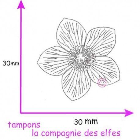 Les nouveautés de Novembre 2016 Tampon-hellebore-rose-de-noel-tampon-petit-modele-nm