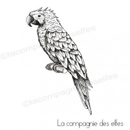 CARTE LIBRE 1/3 Tampon-encreur-perroquet