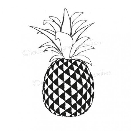 CARTE FRUITS 2/3 Ananas-tampon-non-monte